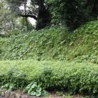 本丸導入路の城壁土塁