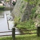 戌亥三重隅櫓跡石垣下犬走り水没中
