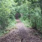 本城曲輪方面に向かう土橋状の尾根道