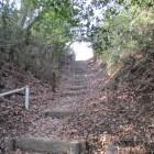 更にこの竪堀は本丸にある堀に派生