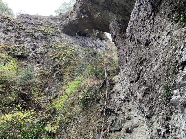 裏門への登城路(体感ほぼ垂直です)