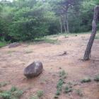 礎石建物跡。ここには兵舎があったそう。