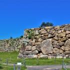 南二の丸石垣(南側)