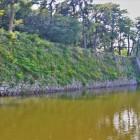 北多聞櫓・戌亥三重櫓跡石垣(北側)