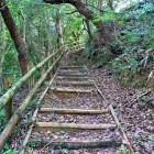 二の郭への登城口 登城口は上の段です。