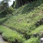 陣屋左側堀と石垣鉢巻土塁