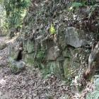 主郭手前登城路の石垣