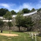 秀吉時代の弧を描いた野面積みの石垣