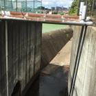 三田御池の水抜き