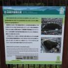 高屋築山古墳(安閑天皇陵)の説明板
