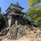 二重櫓(自然石と石垣のコラボ)