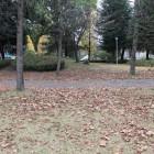 前の公園内部