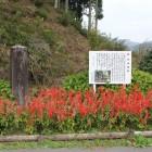 路側帯横に在る城名石碑と案内板