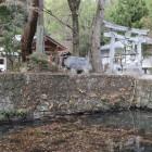 館の堀と石垣
