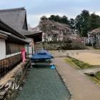 ③ 平成12年に大書院が木造で復元され、篠山城のガイダンス施設として多くの観大書院