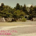 ②発掘調査後、埋め戻された二の丸大書院跡と御殿跡