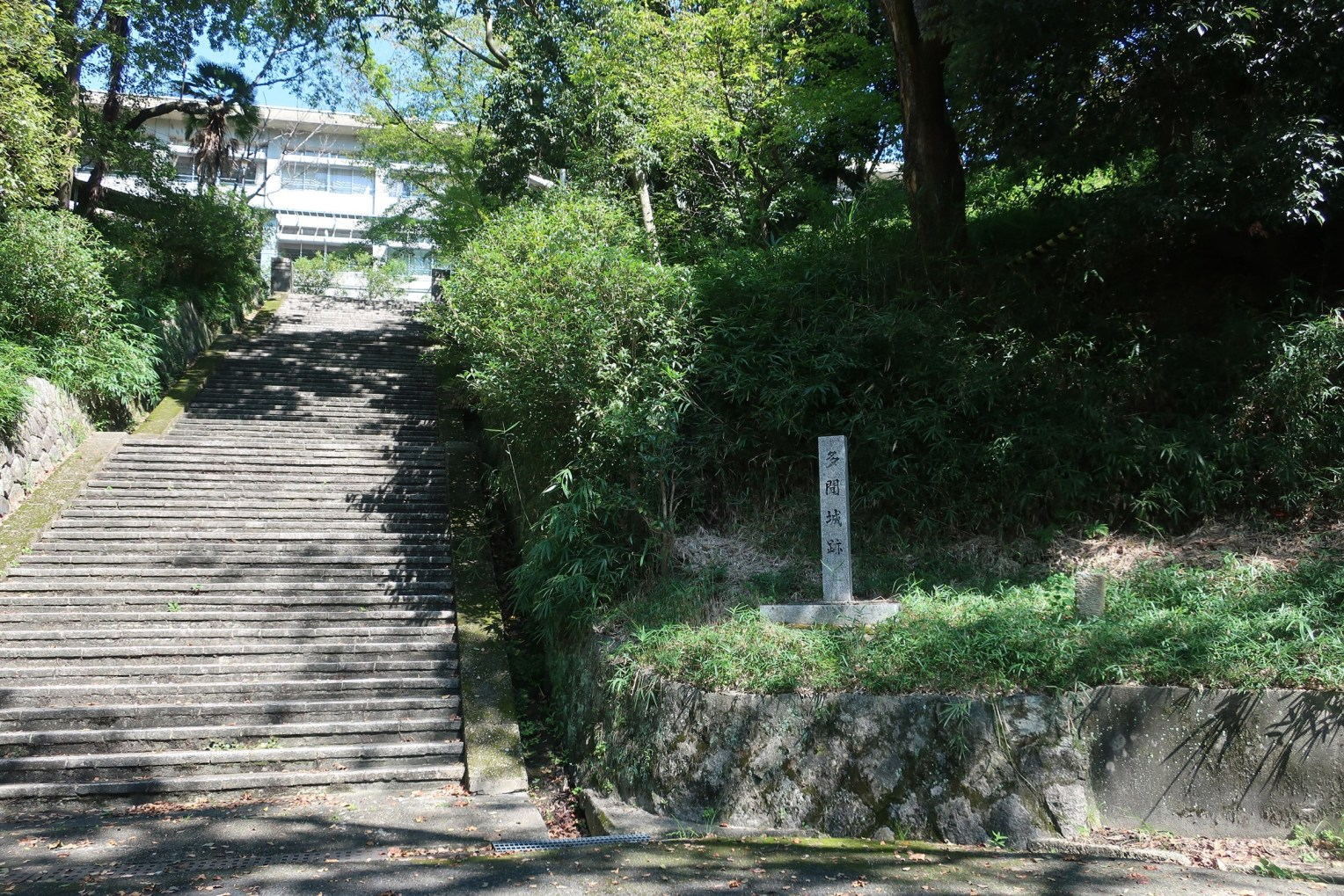 城跡碑と本丸跡の若草中学校