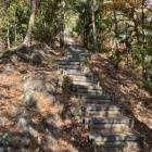 懐かしの木段登城路