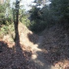 登城口から本曲輪への登城路