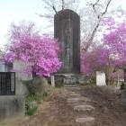 上杉氏一族の碑
