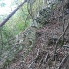 西側尾根の互層露頭 地層の傾きが急峻な斜面を作る
