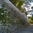 月見櫓と石垣