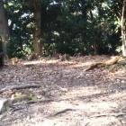 山吹井戸の対面の防御的地点