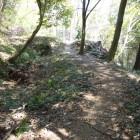 横堀と石積み付き虎口