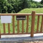 蔵郭と近藤郭の間の土橋と、障子掘草で良く分からず