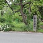 県道104線沿いの城名標柱