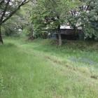 本丸東側水堀