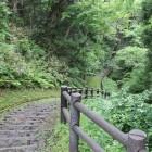 金ヶ崎城北側堀側