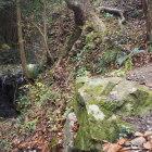 御主殿の滝横にある石垣。今年の台風19号の雨で出てきたそうです。