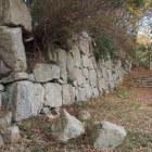 伝平井丸の石垣