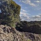 金田城壁石垣
