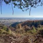 北の丸と二の丸の間、便宜上、曲輪3-1と呼ばれている辺り。見晴らしが非常に良く、関東平野を眺めることが出来る。遠目には、筑波山も視認出来る。