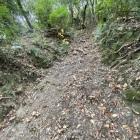 横井戸に向かう途中の竪堀