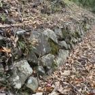 曲輪IIの石積み