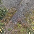 外からの高石垣