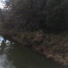 資料館から見た堀と土塁