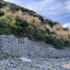 海岸沿いの石垣