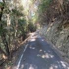狭い海沿い道路