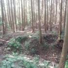 堀切と広い郭跡。この向こうに松永屋敷跡があるはず。
