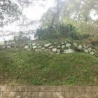 本丸南側に残る石垣。