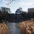 豊川対岸からの鉄櫓