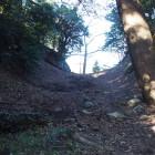 本丸と金柑丸の間の堀。豊川側から入れました。