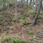 堀切、向井は上部石垣の有る土塁、切岸