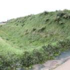 二の丸堀と土塁