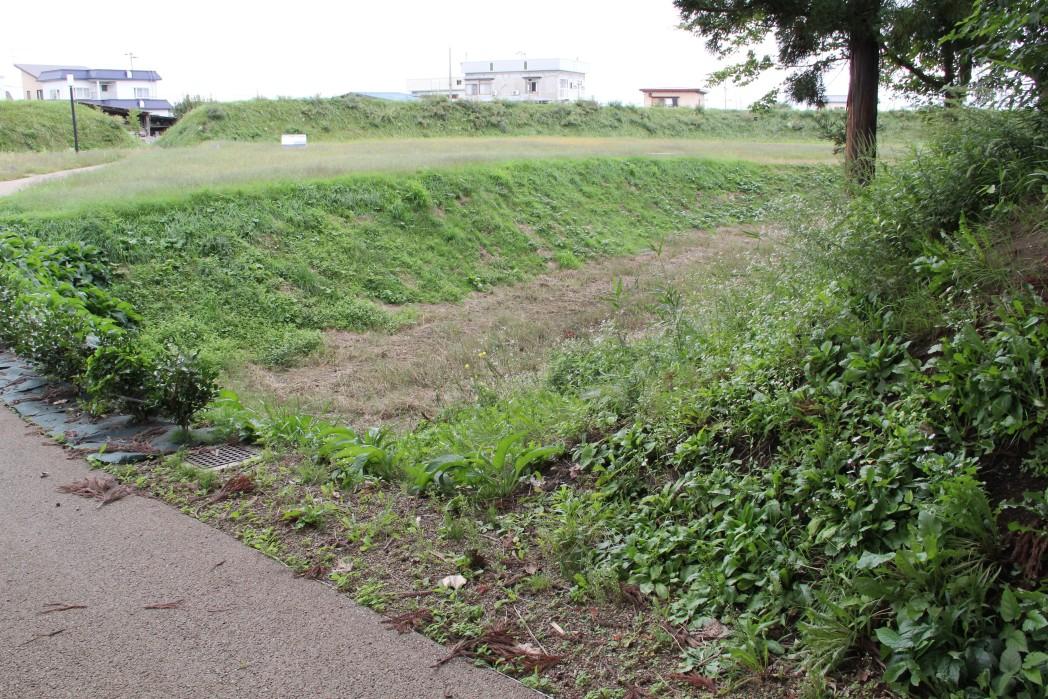 本丸堀と土塁