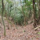 竪堀(曲輪群南)